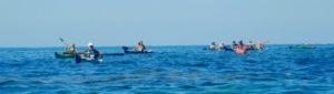 Il nutrito gruppo in mare