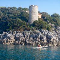 Torre Viola