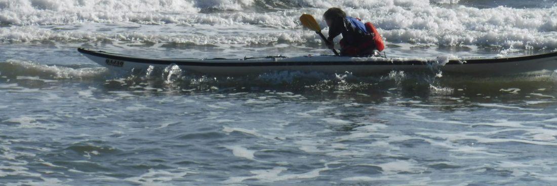 Davide nel surf